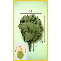 Веник дубовый кавказский оптом от 10 штук