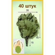 Веник дубовый кавказский оптом от 40 штук