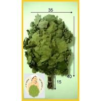 Веник дубовый банный среднерусский оптом от 40 штук